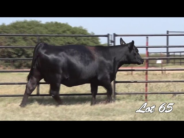 Pollard Farms Lot 65