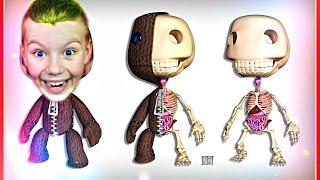 Live Stream LittleBigPlanet™ 3 PS4   #3 КАК СОЗДАТЬ РОБОТА    #Gameplay #PS4 #LittleBigPlanet3