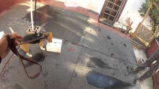 Nosework Training For A Beagle