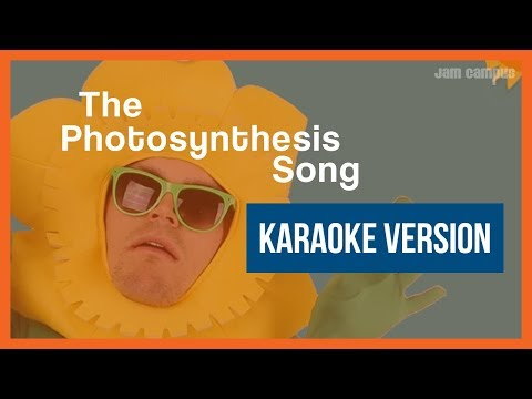 THE PHOTOSYNTHESIS SONG (KARAOKE VERSION)