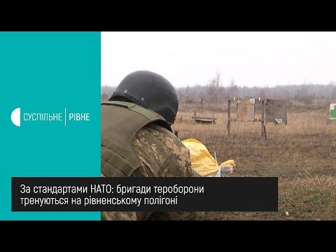 Суспільне Рівне: За стандартами НАТО: бригади тероборони тренуються на рівненському полігоні