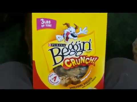 crunchy-treat-review,-purina-beggin'-crunch-dog-treats