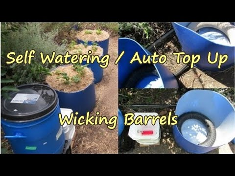 Auto top up/filling Wicking barrels.. Gardening made easy ;-)