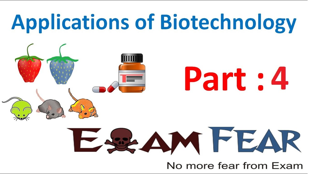 Biology Biotechnology Applications part 4 (Pest Resistance : RNA interference) class 12 XII