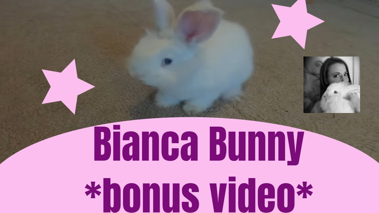 Rough footage of Bianca...rough as in not edited.