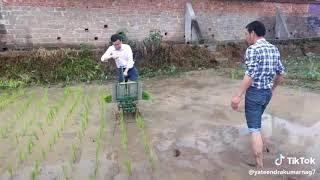 Chinese agriculture technology