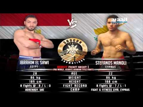 Beirut Fight Night