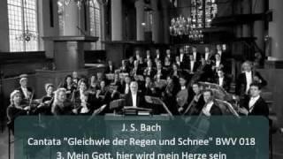 """J. S. Bach - Cantata """"Gleichwie der Regen und Schnee"""" BWV 18 - 3. Mein Gott, hier wird (3/5)"""