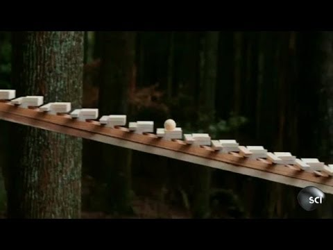 Gravity Powered Xylophone   Outrageous Acts of Science