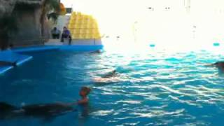 laura and renate swimig with dolphins