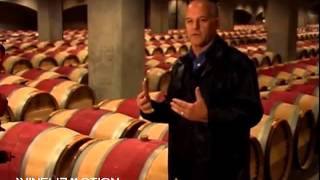 История виноделия. Лучшие вина мира