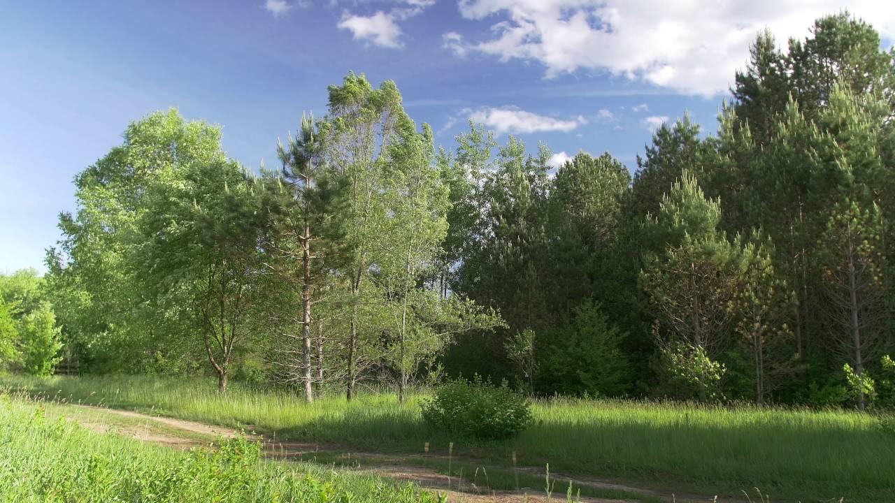 4k Landscape Scene 2trackroad Free Stock Footage Youtube
