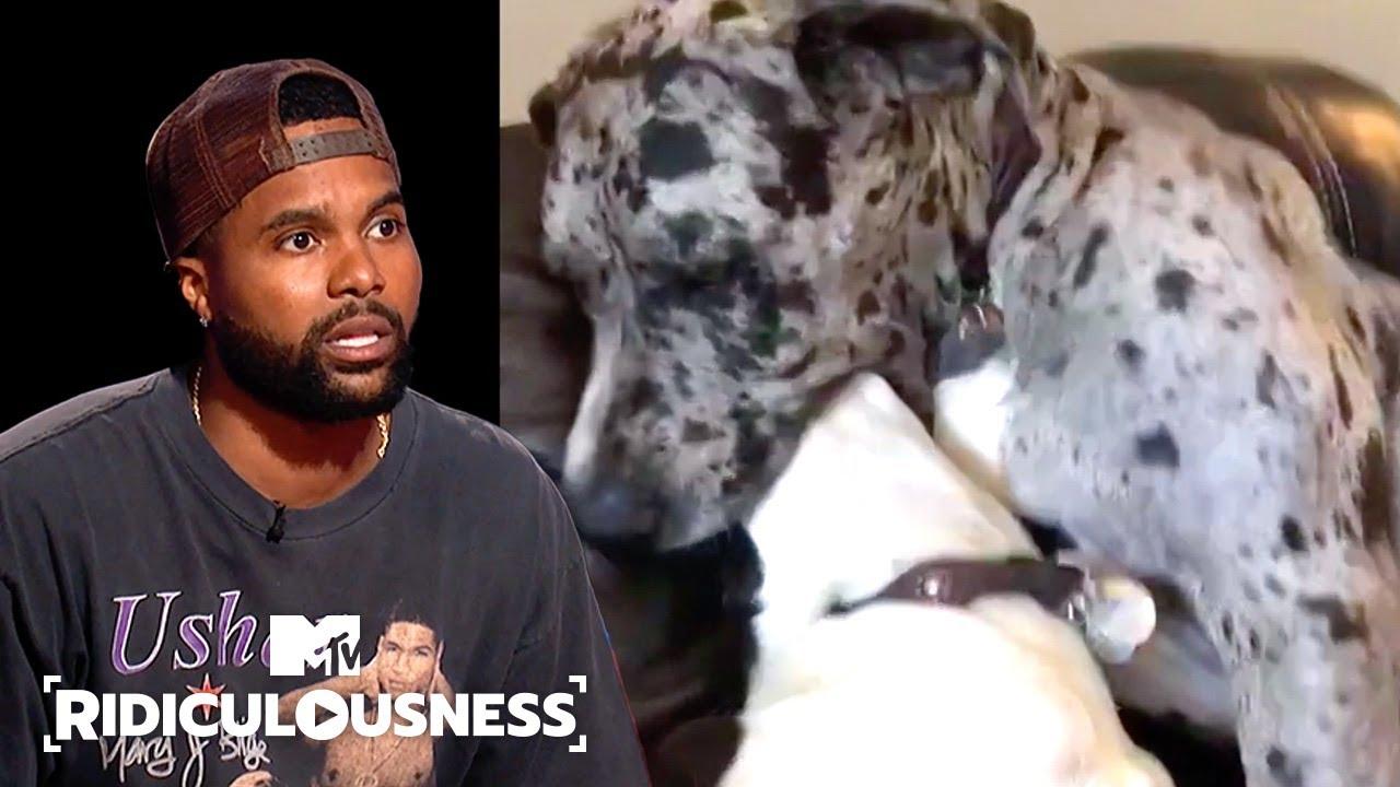 Pet Shenanigans | Ridiculousness