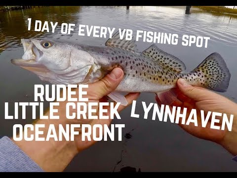 Hitting EVERY Virginia Beach Fishing Location In 1 Day To Find The FISH | Slaying TROUT In December