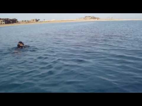 лодка электро катамаран