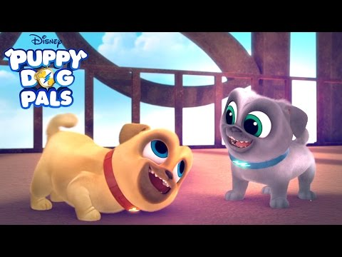 New Series! | Puppy Dog Pals | Disney Junior - YouTube
