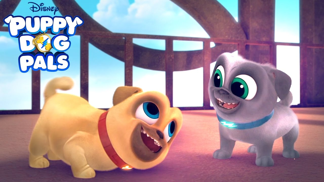 New Series Puppy Dog Pals Disney Junior Youtube
