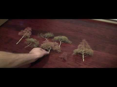 Modelling Railway Train Scenery -Tremendous Suggestions For Model Railroad SuperTrees – Start to Finish