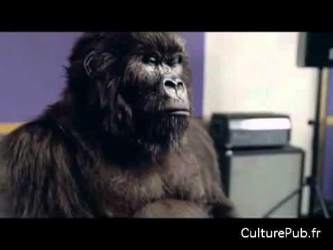Cadbury's Wild gorilla drumming on Phil Collins - YouTube