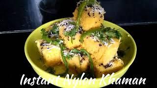 Delicious Recipes # 20  | Instant Nylon Khaman | Gujarati Recipe