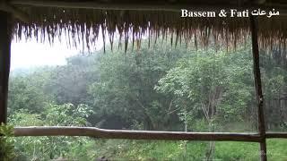 مؤثرات صوتية لمحبي الهدوء - صوت المطر والرعد والرياح