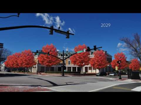 Downtown Cary Possibilities
