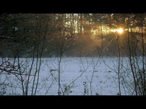 February 11, 2018: Peter Richter - Meditation