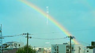 odol - 虹の端 (Rearrange) / El Dorado (Rearrange) (Lyric Video) #はためきとまなざし
