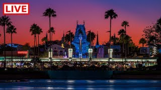 🔴 LIVE:  DVC Moonlight Magic Event! 🐭🌙✨ | Disney's Hollywood Studios 🎥 || Rare Characters & MORE thumbnail