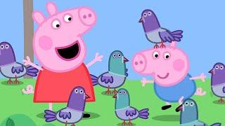 Peppa Pig Full Episodes | Season 8 | Compilation 32 | Kids Video