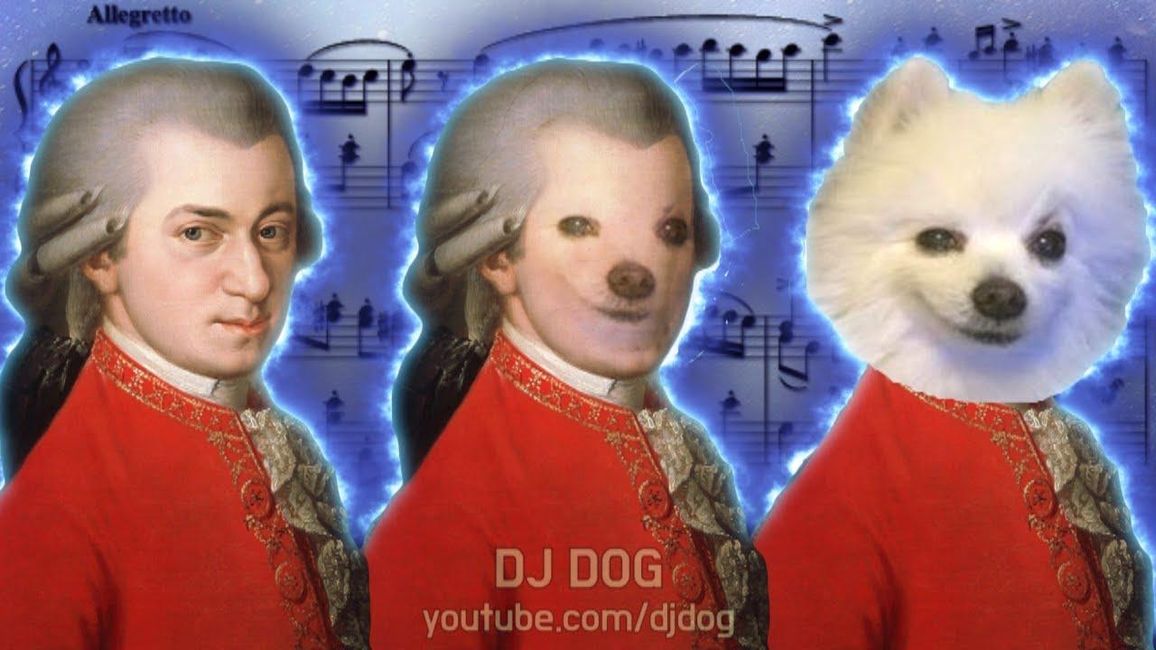 터키행진곡 (Turkish March) 강아지 리믹스 (Gabe the Dog Remix)