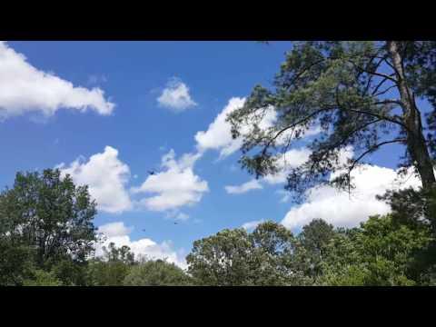 South Carolina Charleston Air Force C-113 C-141 Aircraft Landing Formation
