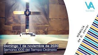 Homilía Mons. Javier Martínez (1.11.20)