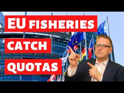 EU Fisheries Ministers Decide 2021 Catch Quotas For The Baltic Sea - EU Explained
