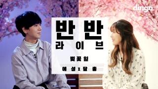 예성 x 달총 벚꽃잎 반반라이브 live