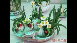 雕刻蟹爪水仙花