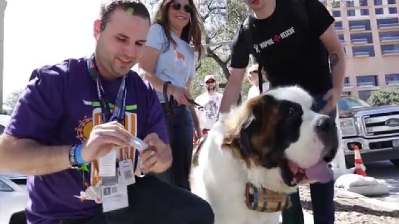 Mophierescue At Sxsw Youtube Keepin' it 💯 leading the way in portable power and wireless charging. youtube
