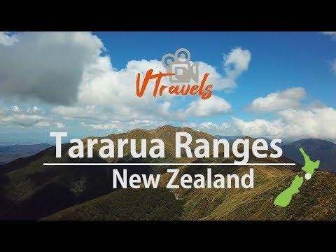 Tararua Ranges from above