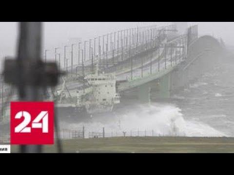 Тайфун Джеби выбросил на берег несколько сухогрузов - Россия 24