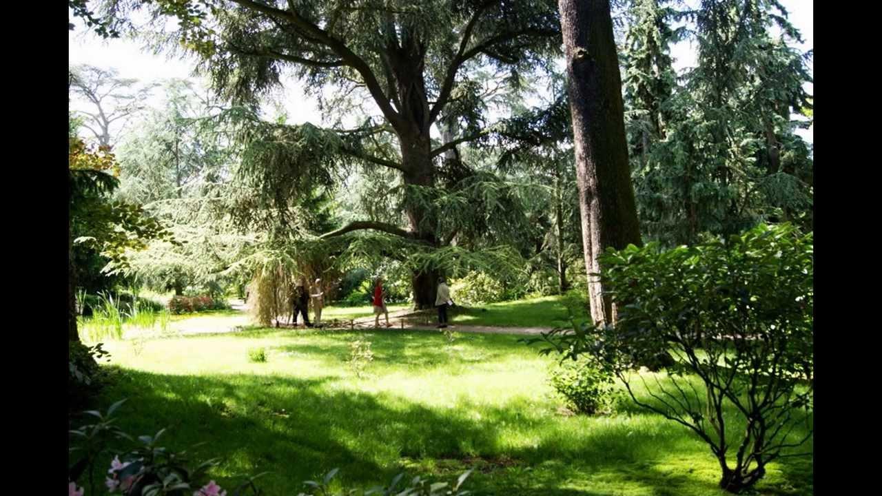Les jardins d 39 albert kahn boulogne billancourt 92 youtube - Jardin japonais boulogne billancourt ...