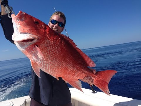 Personal Best Red Snapper - 22 pounds - 165 feet Gulf of Mexico Fishing