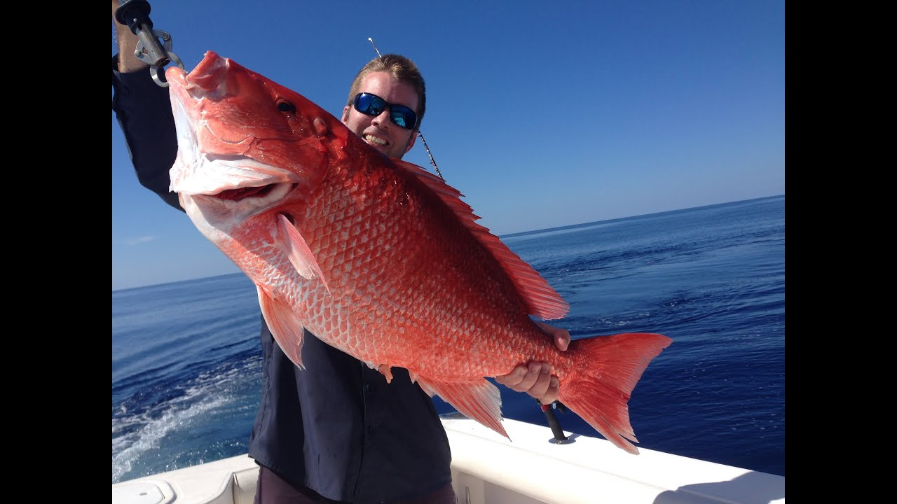 personal best red snapper 22 pounds 165 feet gulf of