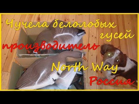 Чучела белолобых гусей производства компании North Way