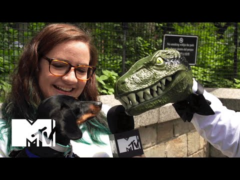 Jurassic World Trivia w/ Raptor on the Street | MTV News