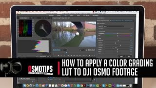 How to Apply a color grading LUT to DJI Osmo Footage