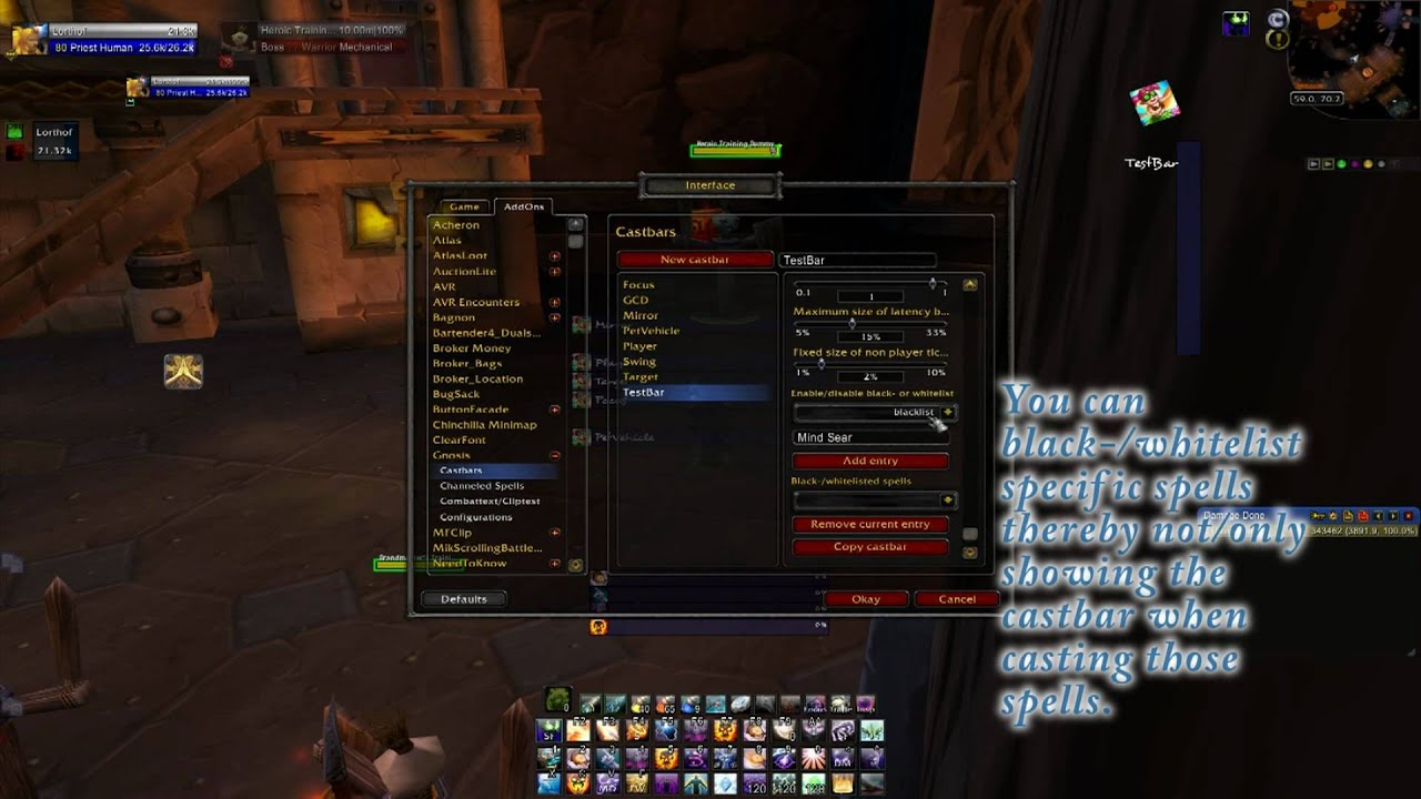 Gnosis (Castbars and Timers) - Addons - World of Warcraft