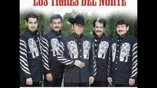 los tigres del norte camelia la texana 1y2