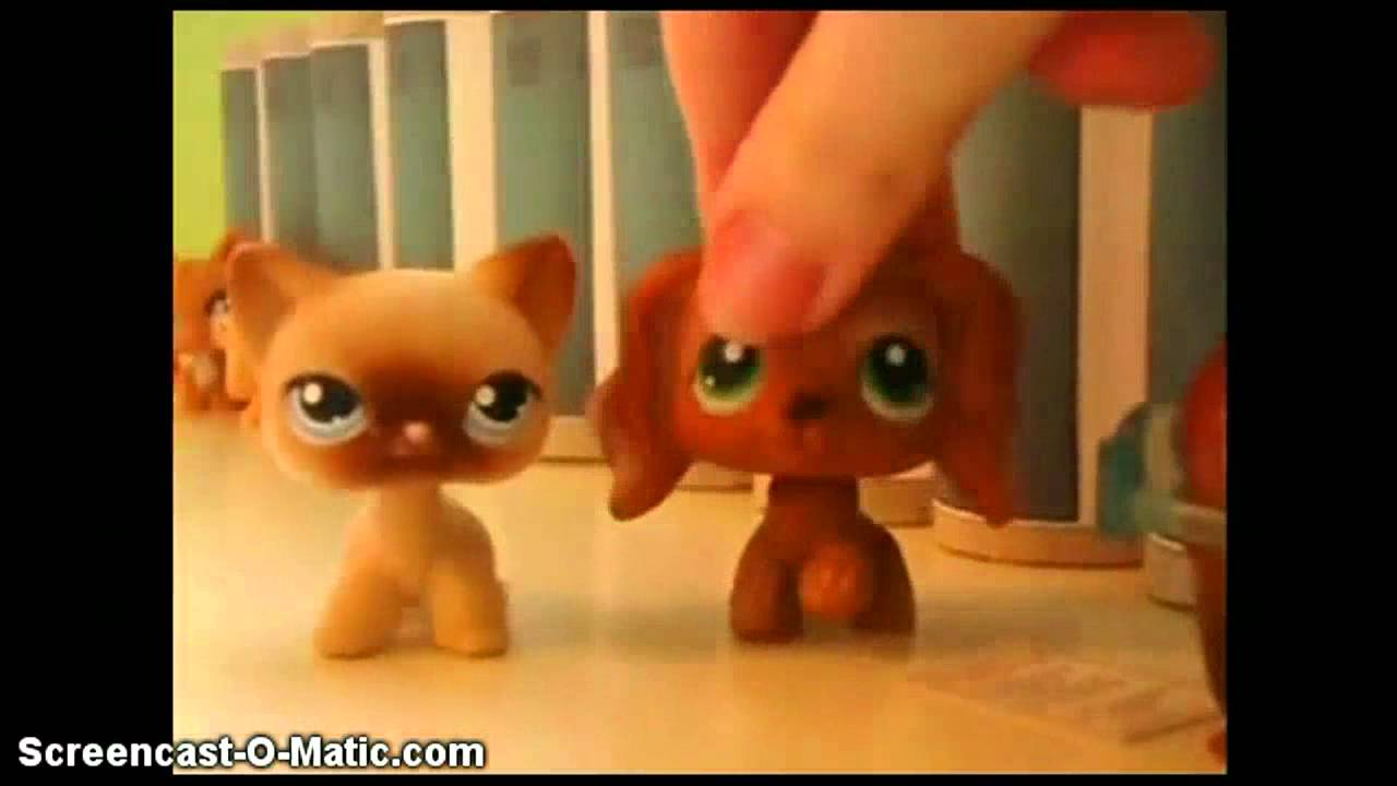 Download Littlest Pet Shop: Popular episodes 1 and 2 spoof: Mean Girls