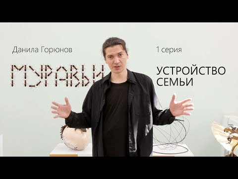 МУРАВЬИ 1 серия Устройство семьи. Данила Горюнов