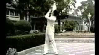 林厚省太极气功十八式   Taichi Qigong 18 Forms by Master Lin Housheng
